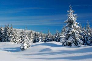 Ski- & Snowboardausrüstung