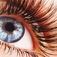 Augen-Make-Ups
