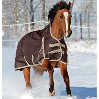 Pferdedecke Winter