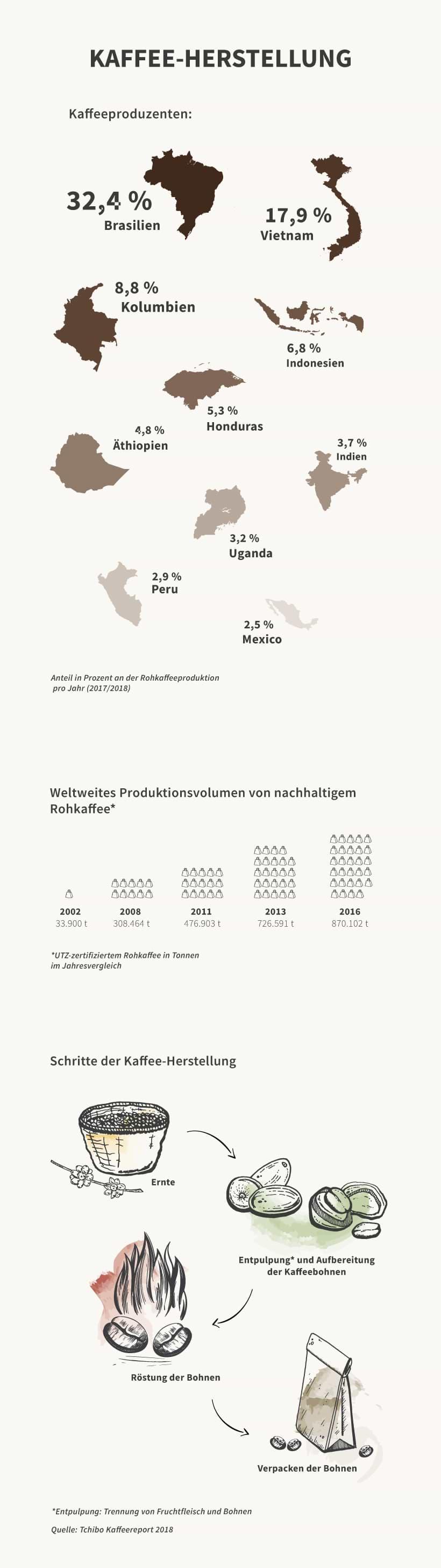 Infografik zur Kaffee-Herstellung
