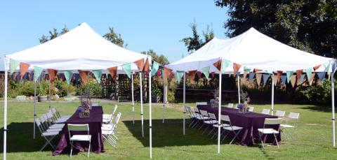 Gartenparty feiern