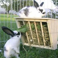 Heuraufen Kleintierbedarf
