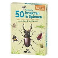 50 Insekten & Spinnen entdecken & bestimmen