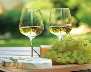 Weißwein-Trauben