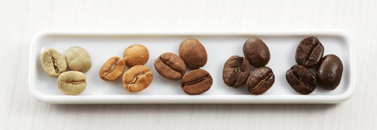 Kaffeebohnen in verschiedenen Röstungsgraden