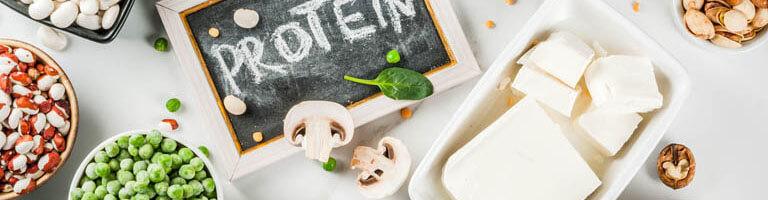 Verschiedene vegane Proteinquellen