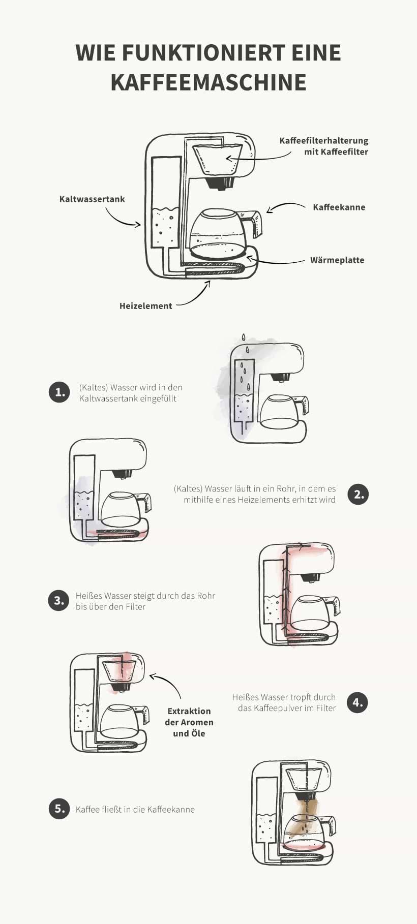 Infografik: So funktioniert eine Kaffeemaschine