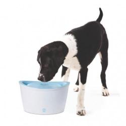 Hunde-Trinkbrunnen