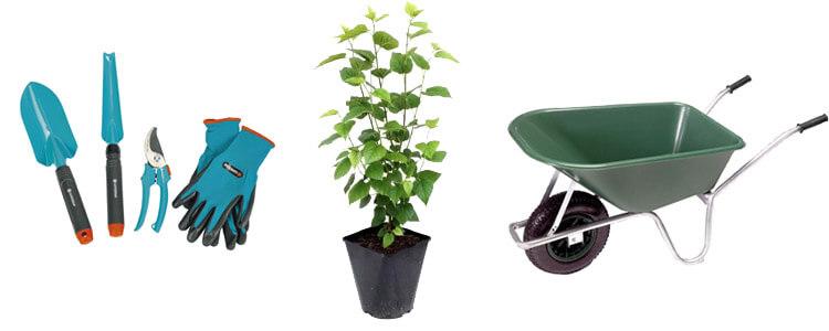 Gartenartikel für Nutzgärten