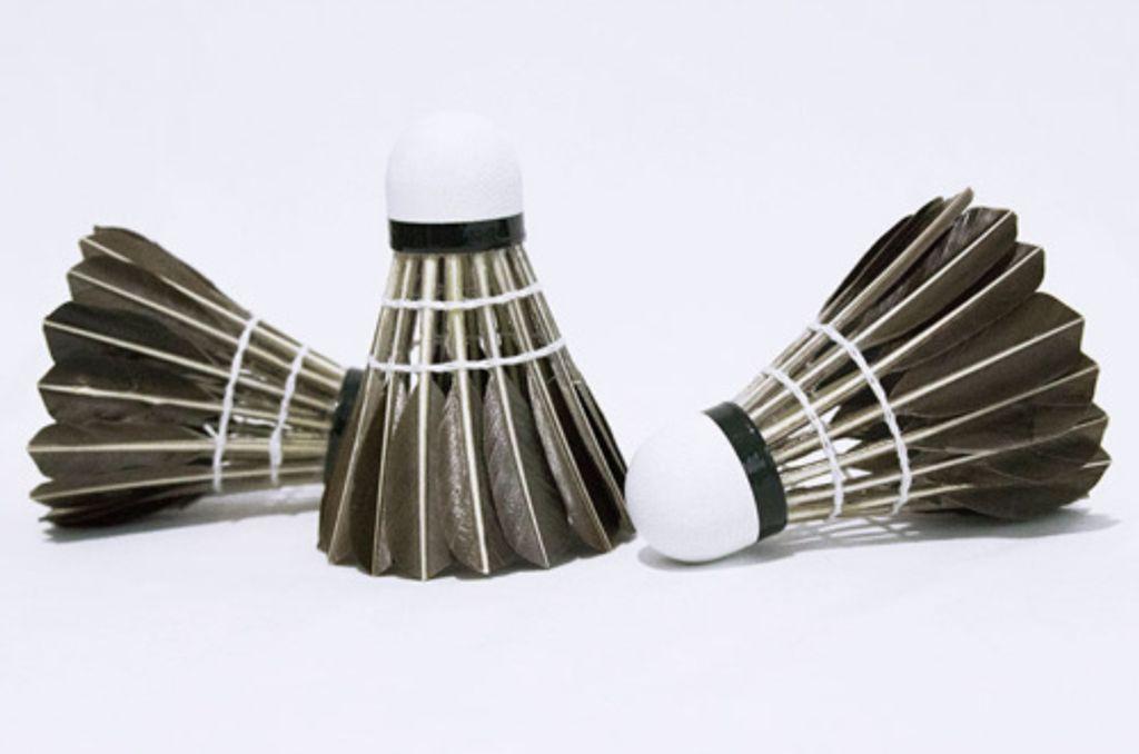 12 Stk Federbälle Badminton Naturfederball mit echten Federn Federball Weiß DE
