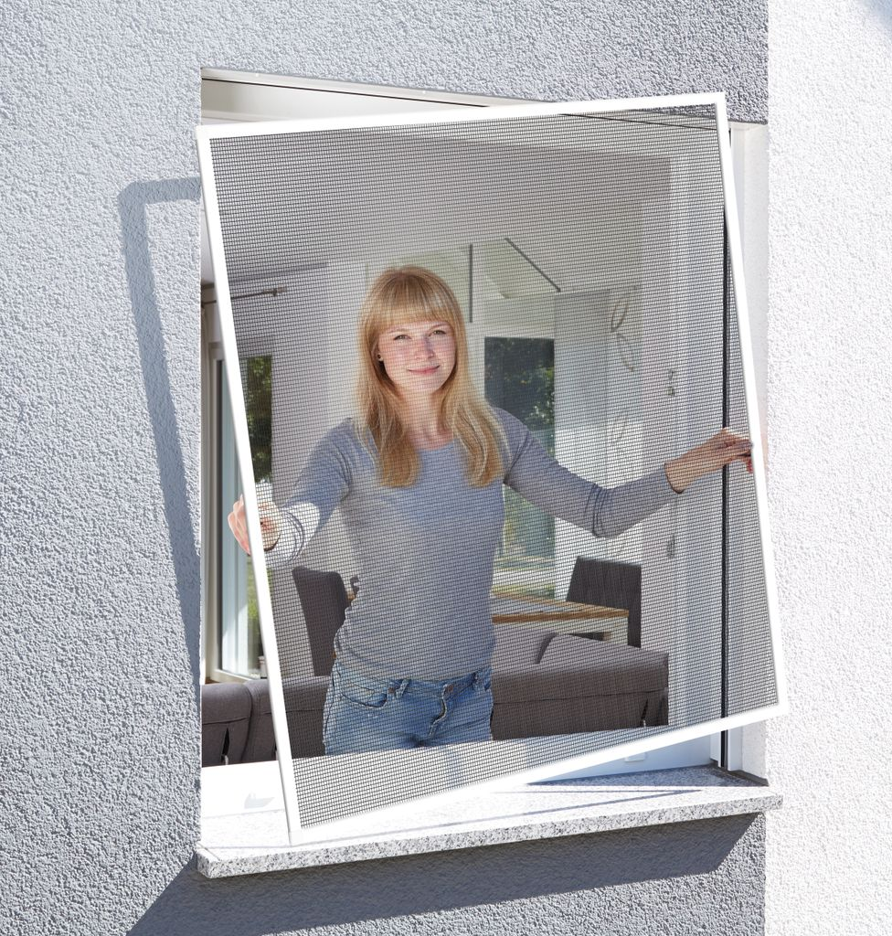 Schellenberg Insektenschutz Fenster 20 x 20 cm, BASIC Fliegengitter &  Mückenschutz, Farbe Weiß