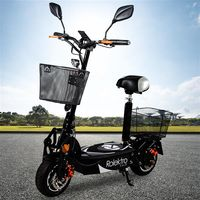 Rolektro, E-Joy 20, Schwarz, faltbarer E-Scooter mit Straßenzulassung