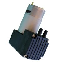 Mini DC9 / 12 / 24V Vakuumpumpe Luftsaugpumpe Kompressor Elektrowerkzeuge 4v12a83r48 Schwarz + Mondlicht Silber