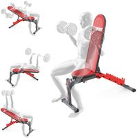 K-Sport: Trainingsbank beidseitig verstellbar I Komfortable Hantelbank für Kurz & Langhanteltraining I Kraftstation zum effektiven Muskeltraining I Professionelle Fitnessgeräte für Zuhause