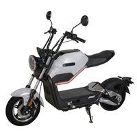 E-Roller Max 45 km/h