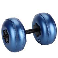 Hantelset 10kg Blau Hantel Kurzhantel Set Krafttraining Hantelscheiben Kurzhanteln Wasserhantel