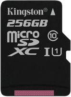Kingston microSDXC Class10 UHS-I Single ohne Adapter, 256GB