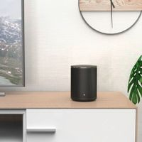 Hama Sirium 1400ABT Lautsprecher, WIFI, Alexa, Bluetooth - Smart Speaker