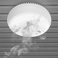 ZigBee Tuya Rauchmelder Rauchnetzalarm Arbeiten Sie mit Smart Life