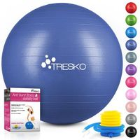 TRESKO Gymnastikball (Indigoblau, 65cm) mit Pumpe Fitnessball Yogaball Sitzball Sportball Pilates Ball Sportball
