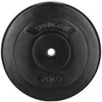 Hantelscheiben 20 kg Kunststoff Gewichte 31mm Hanteln Gewichtsscheiben