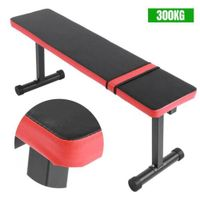 Profi Hantelbank Fitnessbank Trainingsbank Flachbank Trainingshocker bis 300kg A