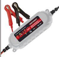 Dino KRAFTPAKET Batterieladegerät 6/12V-1A KFZ Auto Motorrad Batterietrainer Erhaltungsgerät Erhaltuingsladegerät
