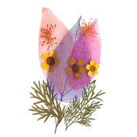 QINREN Nat/ürliche getrocknete gepresste Blumen 3 Blatt gemischt echte getrocknete Blumen Charms verschiedene gepresste Blumen G/änsebl/ümchen f/ür DIY Nagel Lesezeichen Scrapbooking