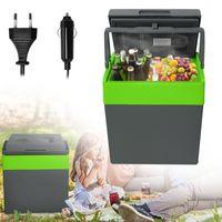 NAIZY 30L Auto Kühlbox Elektrisch Tragbare Mini-Kühlschrank 12V 230V, Kühl & Warmhaltefunktion für Camping