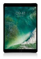 Apple iPad Pro 10.5 Wifi + Cellular 256 GB space grau