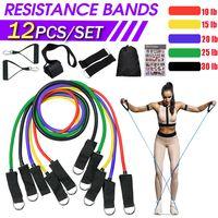 Widerstandsbänder 12-teiliges Set, Trainingsbänder,  Resistance Band, mit Aufbewahrungstasche, Griffen, Knöchelriemen, für Krafttraining, Physiotherapie, Heimtraining 10-30LB
