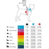 Gr/ö/ßen 0-6 Sie und Ihren Hund zu Fu/ß auf Leichtigkeit und Komfort Fleece Baum CosyDogs schwarzen Fleece Hundegeschirr