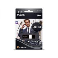 Xlyne - USB-Flash-Laufwerk - 256 GB - USB 3.0