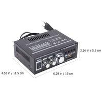 220V Stereo-Audio-Leistungsverstärker Mini-Player mit EU-Stecker