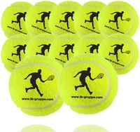 TK Gruppe Timo Klingler 12x Tennisbälle für Wettkampf & Training - Tennisball gelb für alle Beläge - Sandplatz & Halle - mit Tennisnetz zur Aufbewahrung…