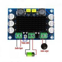 Dc 12v-24v Tpa3116 D2 100 Watt Mono Channel Digitale Verstärker-Brett Leistungsverstärkerplatine Audio Stereo AMP Platine