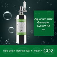 2L Doppel Aquarium CO2 Generator System Kit CO2 Edelstahl Zylinder Generator System Kohlendioxid Reaktor Kit fuer Pflanzen Aquarium