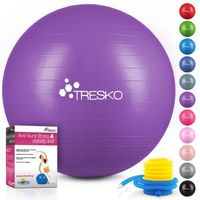 TRESKO Gymnastikball (Lila, 65cm) mit Pumpe Fitnessball Yogaball Sitzball Sportball Pilates Ball Sportball
