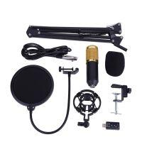 Kondensator Mikrofon Mikrofonarm Komplett Kit Mit Popschutz und Mikrofonständer Für Studio Aufnahme 130 dB