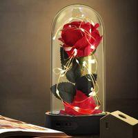 Bunt Gold foil Rose und LED-Licht in Glaskuppel f/ür Hauptdekor Geburtstag Muttertag Hochzeit Jubil/äum Weihnachtstag Sch/öne und das Biest Rose Kit Valentinstag