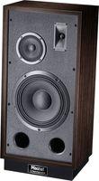 Magnat Transpuls 1000 R, Full-Size 3-Wege Bassreflex Standbox mit hohem Wirkungsgrad Rechter Lautsprecher, 1 Stück