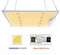 √ LED Pflanzenlampe LED Grow Lampe SF 1000W Pflanzenlampe Vollspektrum  LED Grow Light Full Spectrum für Zimmerpflanzen, Gemüse, Blume