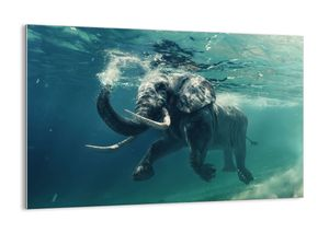 "Glasbild - 120x80 cm - ""Jeder schwimmt gern""- Wandbilder  - Elefant Meer Ozean - Arttor - GAA120x80-3944"