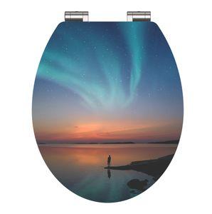 SCHÜTTE WC Sitz Holz POLAR LIGHTS, High Gloss Toilettendeckel mit  Absenkautomatik, Toilettensitz mit Holzkern, Motivdruck