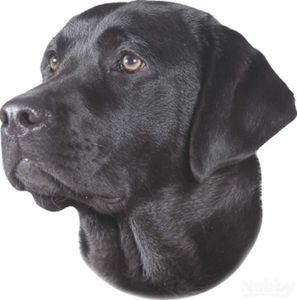 Aufkleber Labrador schwarz 120 x 150 mm; 2er Set | Lieferumfang: 5 Packungen/Einheiten