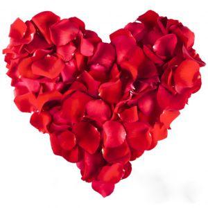 1000 Rosenblätter Rosenblüten Rosen Blütenblätter Hochzeit Valentinstag Deko rot