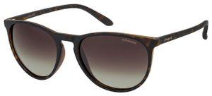 Polaroid sonnenbrille 6003/N/S DL5/WJ unisex geflammt dunkelbraun