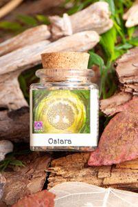 Frühlings Äquinox - Ostara