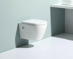 WC Spülrandlos Wand Hänge WC Taharet Dusch-WC Toilette Softclose inkl. ArmaturNanobeschichtung mit Bidet-funktion Intimdusche 52x36cm