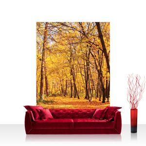Textil Fototapete no. 0084 - 200X280 cm - Autumn Forest Herbstblätter Wald Bäume Baum Forest Herbst liwwing (R)